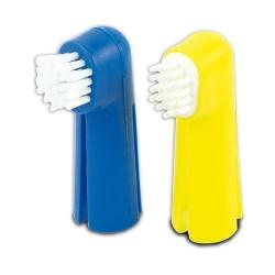 Kit dentaire pour les dents...